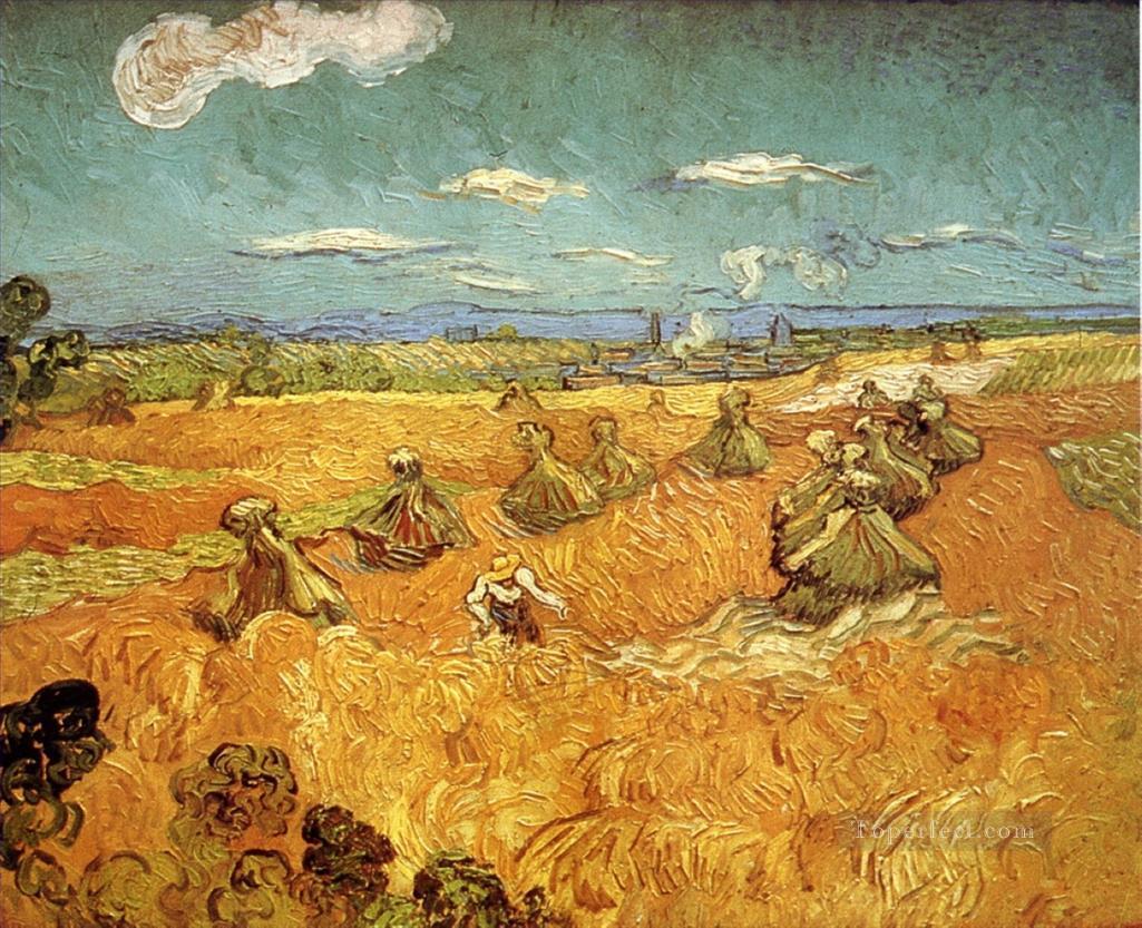 Vincent Van Gogh The Wheat Field Series La Serie Campi