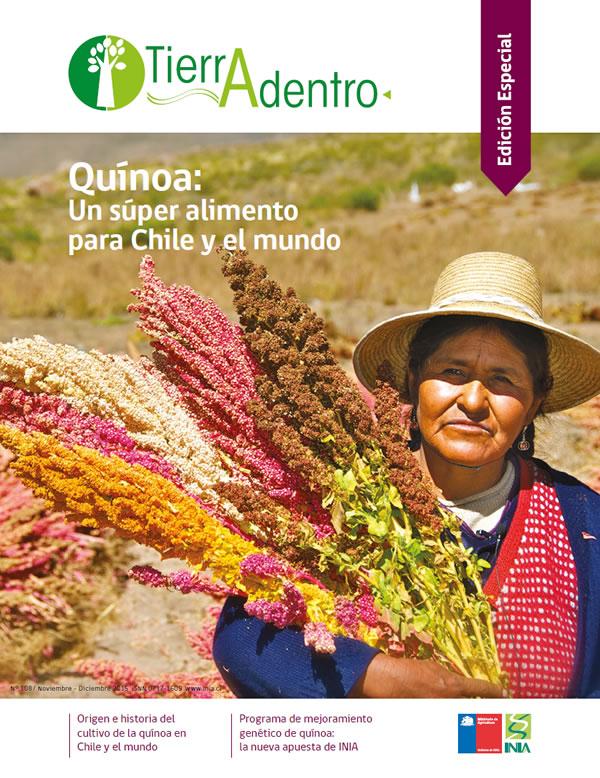 Quínoa: Un súper alimento para Chile y el mundo
