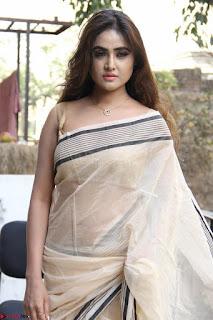 Sony Charishta in Brown saree Cute Beauty   IMG 3590 1600x1067.JPG