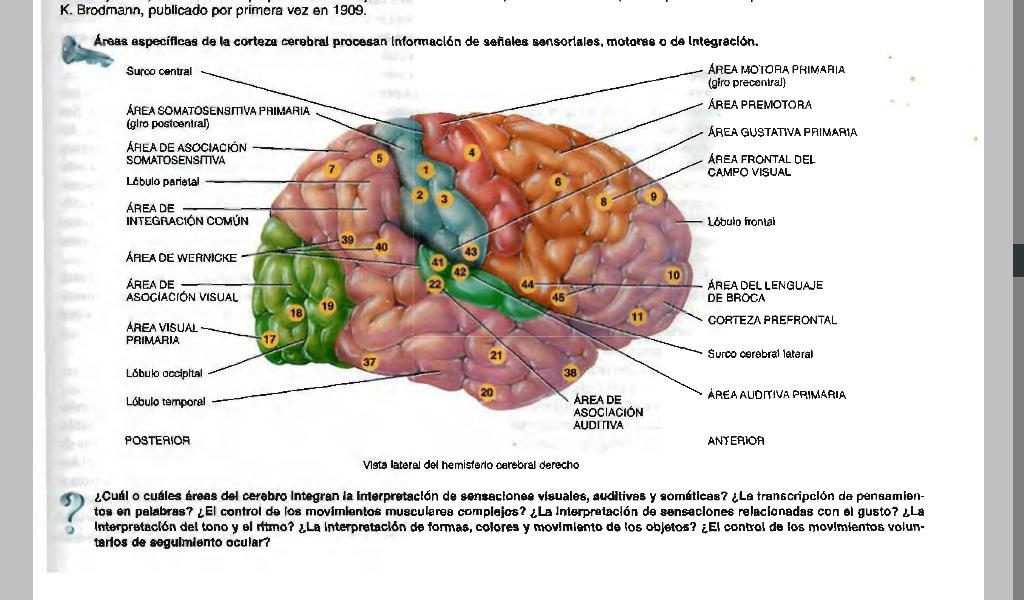 biología sexto bachillerato