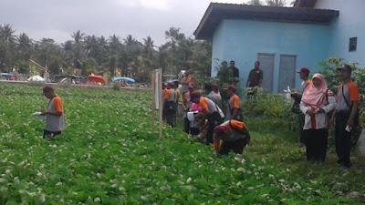 Dua Desa di Kecamatan Pituruh Menjadi Tempat Study Banding Tingkat Provinsi