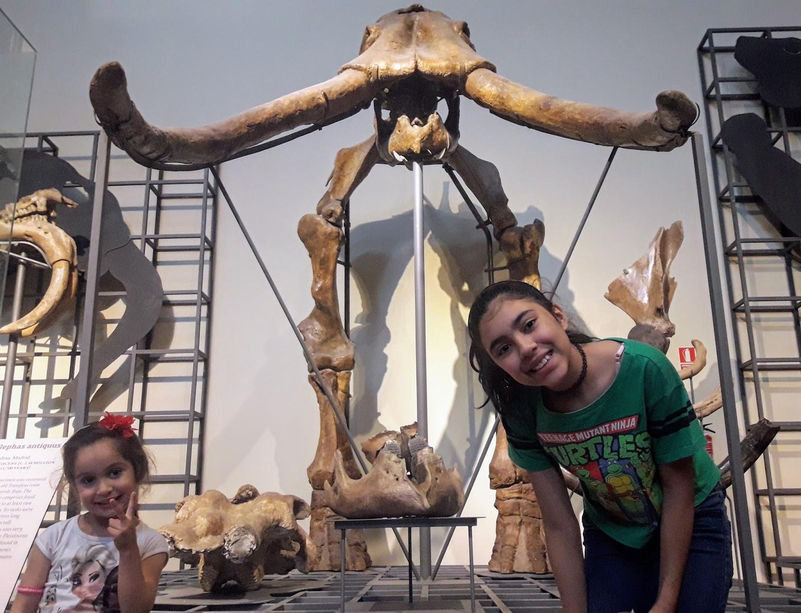 Conheça o museu de ciências de Madrid