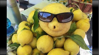 gambar jeruk lemon aneh bergaya seperti turis