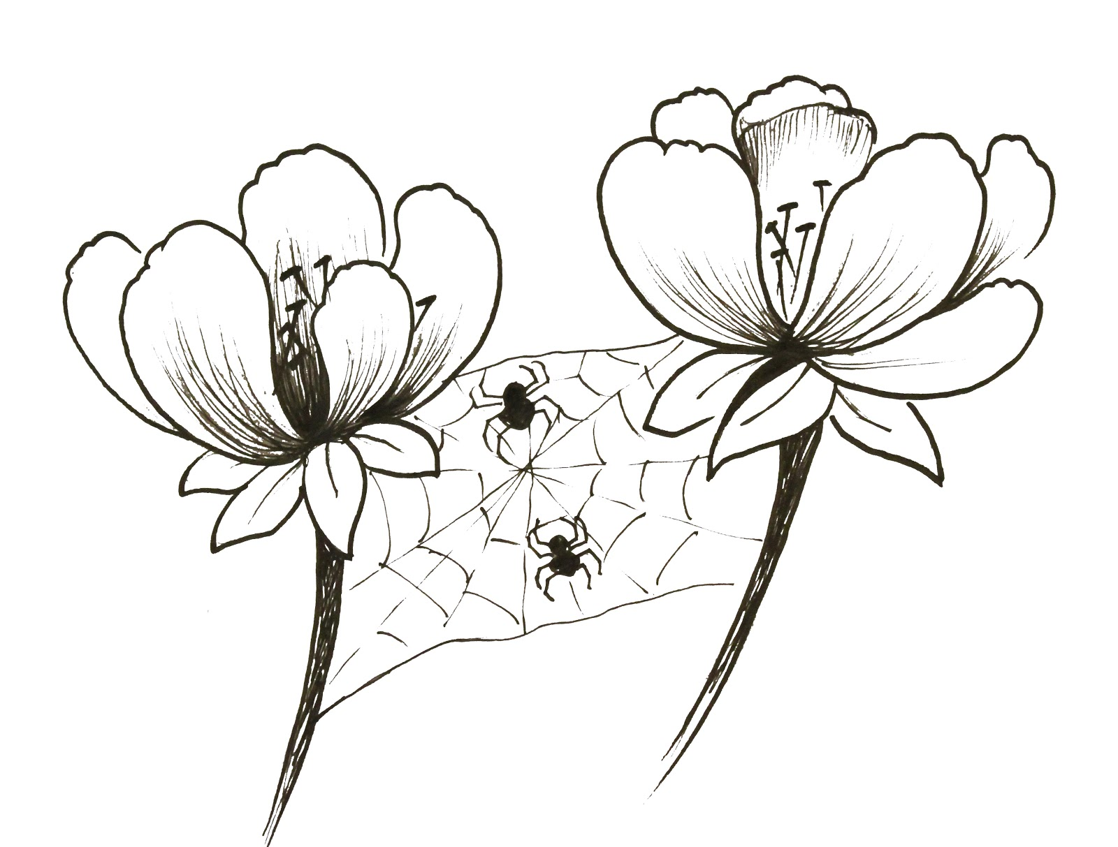 It's just an image of Zany Small Flower Drawing