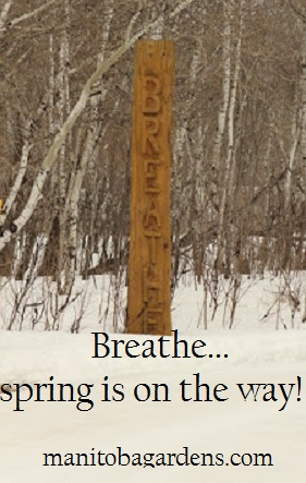 Breathe, spring is on the way