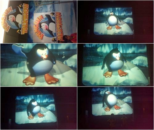 manila ocean park penguin talk show