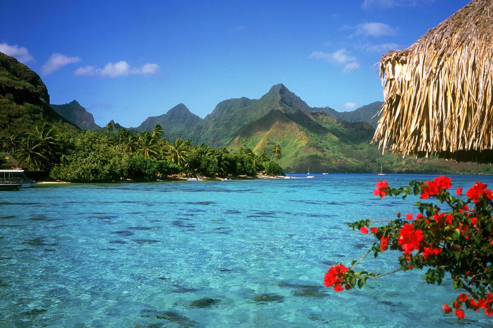 Lagoon Tropical Island: Tropical Lagoon Wallpapers