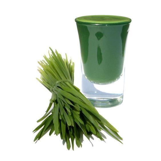 Wheat grass juice