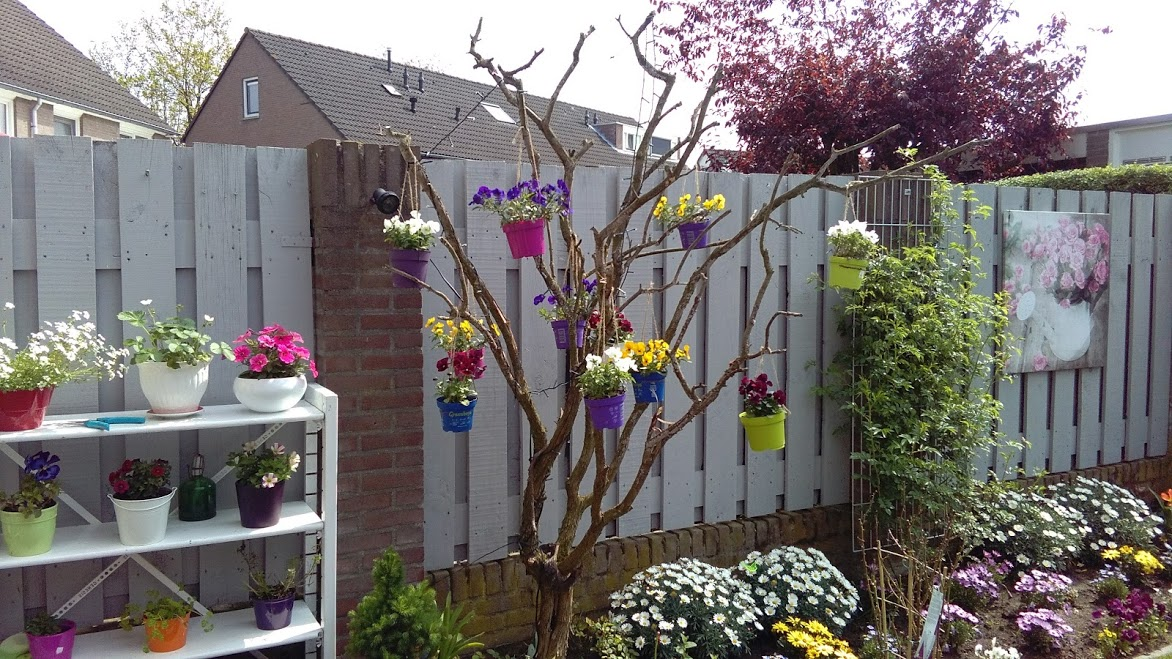 decorar arboles de jardin affordable decorar arboles de