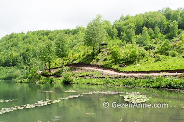Ordu Ulugöl Tabiat Parkı, Gölköy