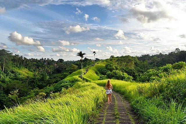 3 Tempat yang Wajib Kamu Kunjungi Saat di Ubud Bali