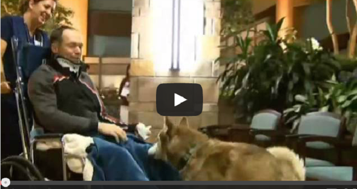 Dog Saves Life of Owner Paralyzed in Skiing Accident