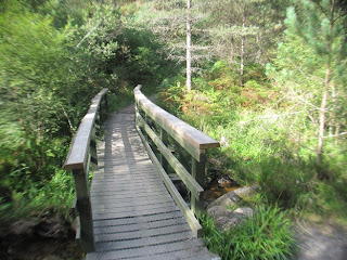 The second bridge on the Burn o' Vat walk