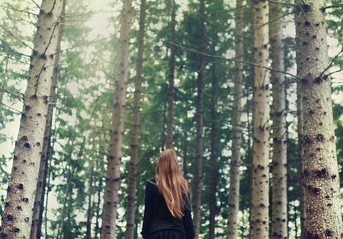 Chùm thơ buồn đời ngắn về lẽ sống, lối sống, dục vọng cuộc đời