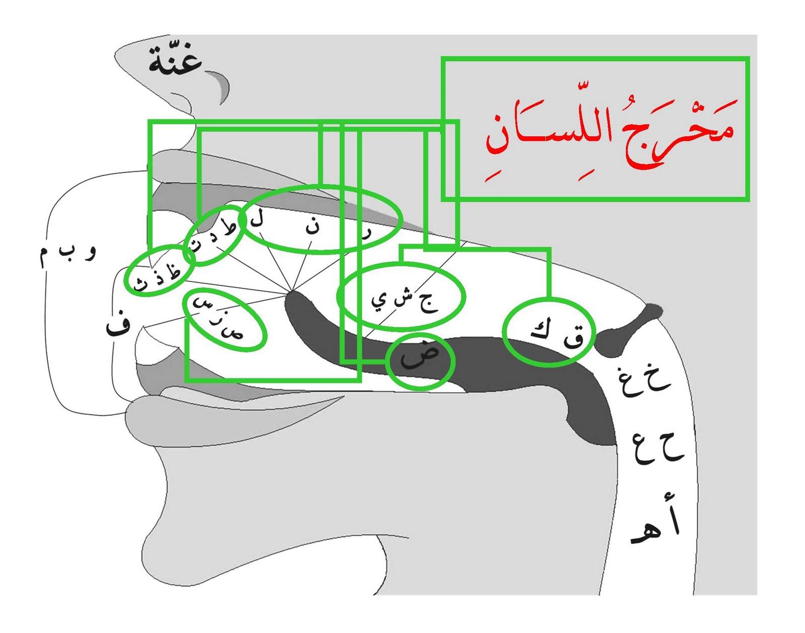 SUN3 KRAPYAK: Ayo... Mengenal Tajwid dalam Al Quran