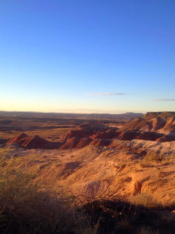 Reef Indy Stops At The Petrified Forest National Park