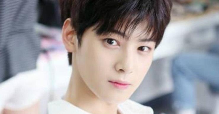 Cha Eun-woo, Wajah Baru Korea Selatan yang Sedang Bersinar