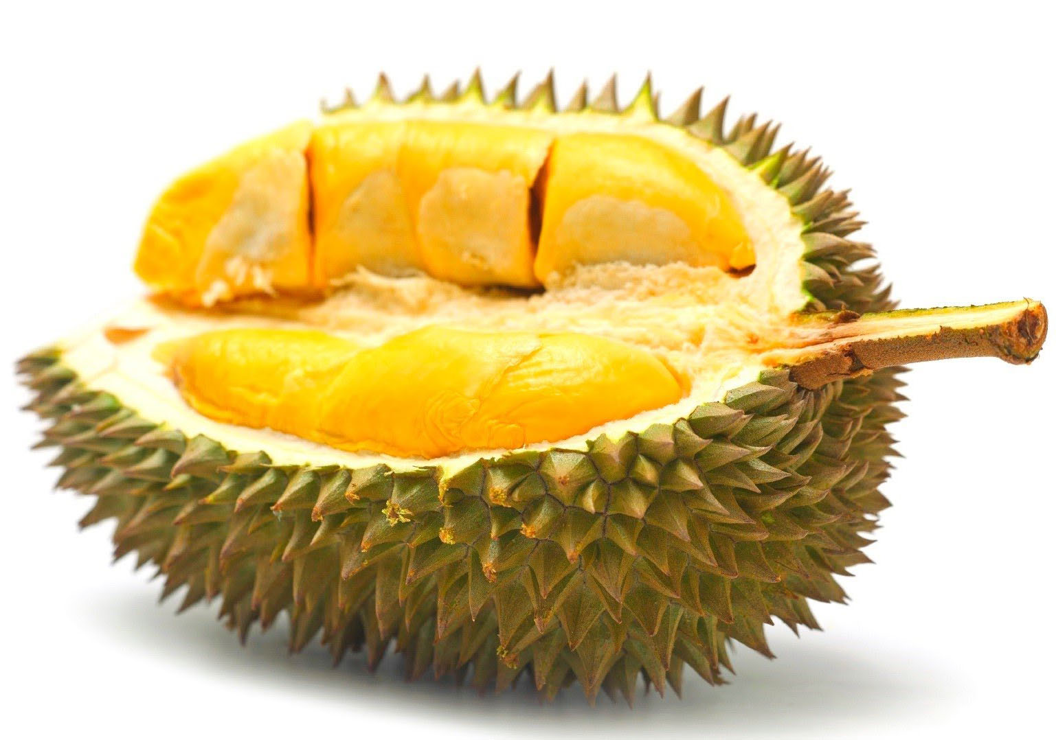 Khasiat dan Manfaat Buah Durian Bagi Kesehatan Tubuh