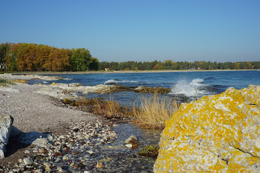 Autumn on Gotland