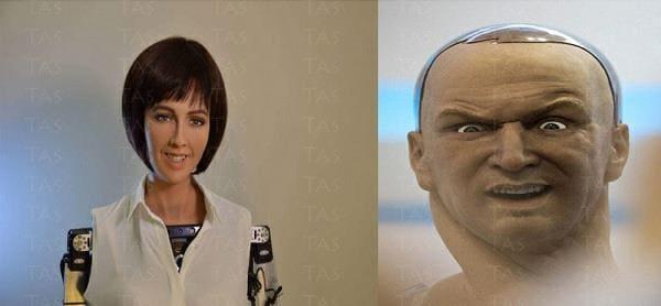 روبوت صوفيا و هان