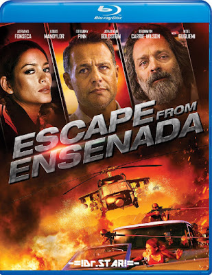 Escape from Ensenada 2017 Dual Audio BRRip 480p 300Mb x264