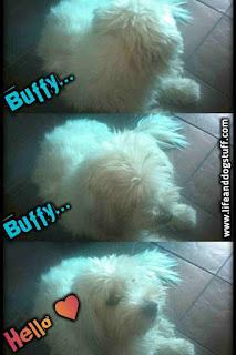 My Buffy