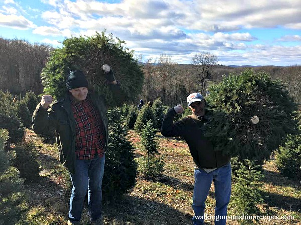 My husband and my brother carrying our fresh cut Christmas trees from Walking on Sunshine.