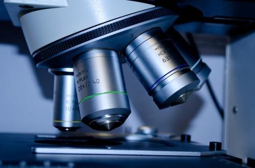 investigación malformaciones vasculares