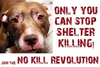 Stop Shelter killing. Join the No Kill revolution. Adopt a Shelter animal.