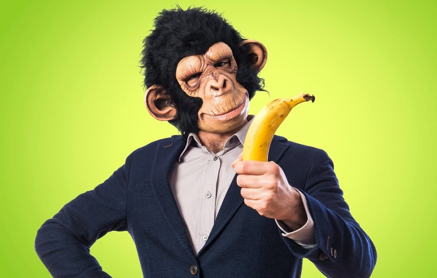 Bananas are created by humans around 5,000 BC.