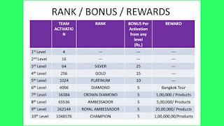 THE MANNU APP RANK/ BONUS / REWARDS