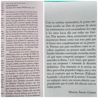 Reseña de UNA MANZANA EN LA NEVERA de SandraSánchez en la Revista Anáfora