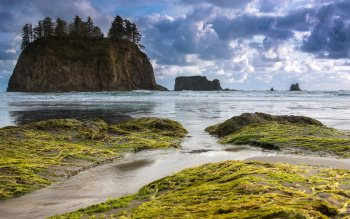 Wallpaper: Second Beach on the Olympic Peninsula