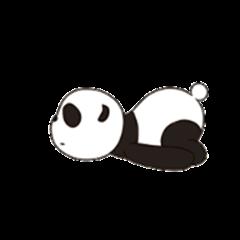 The Panda's 2