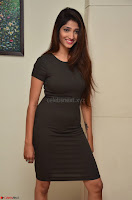 Priya Vadlamani super cute in tight brown dress at Stone Media Films production No 1 movie announcement 026.jpg