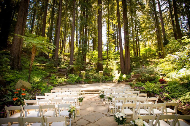 Forest Wedding Venues