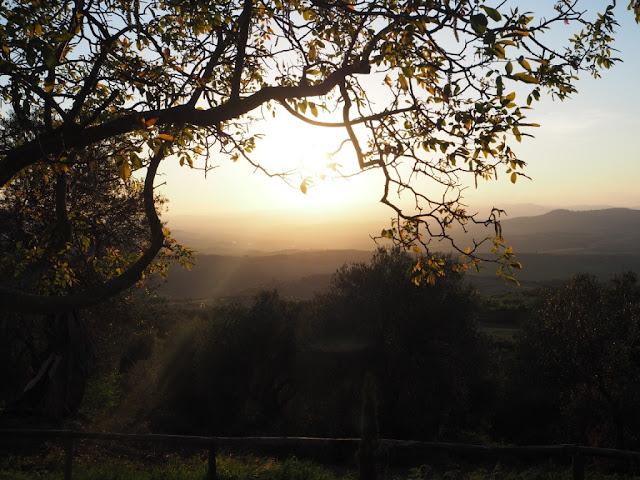 Pod toskánským sluncem - západ slunce, okolí Montalcino