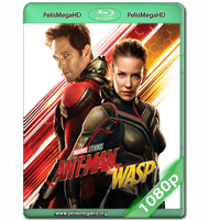ANT-MAN AND THE WASP: EL HOMBRE HORMIGA Y LA AVISPA (2018) WEB-DL 1080P HD MKV ESPAÑOL LATINO