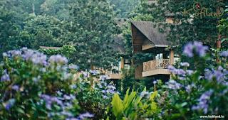 kofiland resort thekkady
