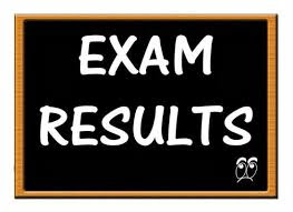 10th Class Results 2017