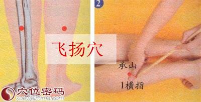 飛揚穴位 | 飛揚穴痛位置 - 穴道按摩經絡圖解 | Source:xueweitu.iiyun.com