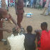 Photos: Suspected thieves apprehended and paraded in Kano state, get their hair shaved off