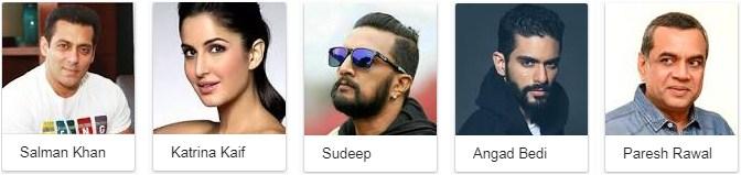 Tiger Zinda Hai 2017 Star Cast