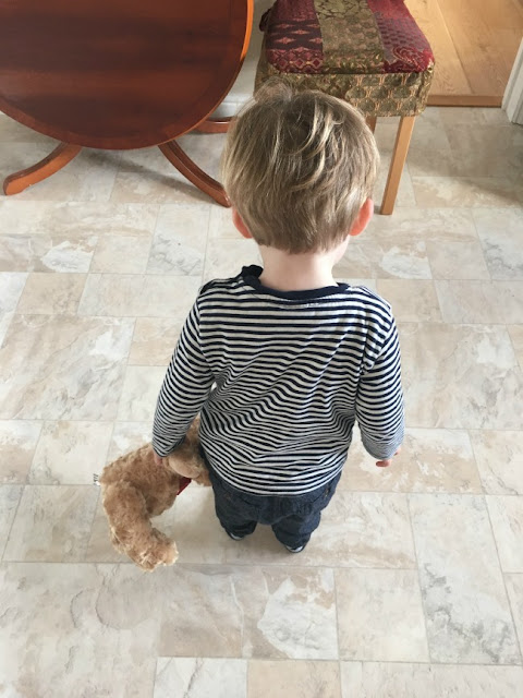 toddler-with-hamleys-teddybear