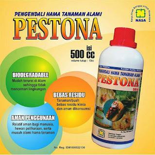 mengatasi penyakit kelapa sawit