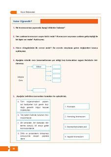 10. Sınıf Biyoloji Ders Kitabı Cevapları Berkay Yayınları Sayfa 22