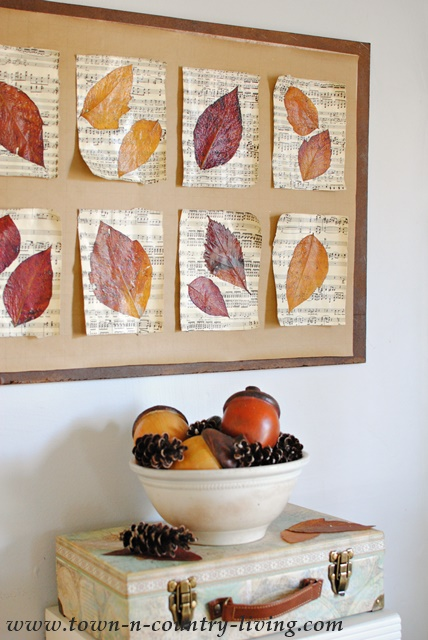 autumn leaves displayed on music sheets in a gallery on the wall.