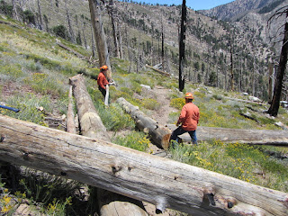 Trailbuilders removing deadfalls on Big Cienega Trail