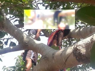 दुमका हंसाडीहा थाना इलाके के मधुबन गांव में रविवार की सुबह पेड़ से लटका युवक-युवती का शव बरामद किया गया।