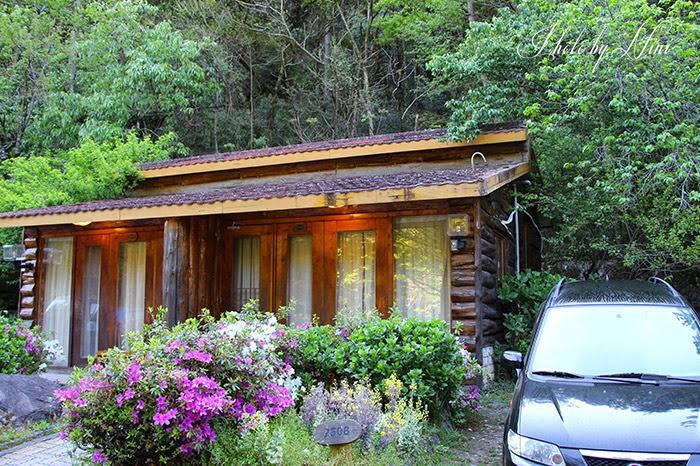 【武陵農場住宿推薦】楓林木屋。全武陵最浪漫的住宿環境介紹